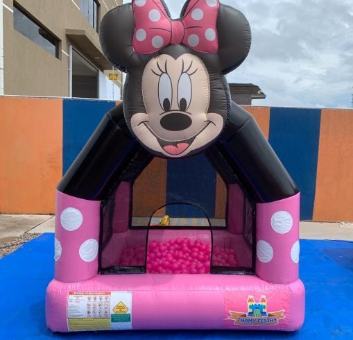 piscina_minnie-thamy-festas